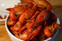 lobster-3453